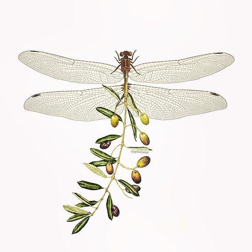 Libeluliva. Collage de estilo surrealista de una libelula con cola de olivas