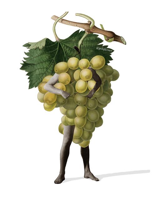 Cuadro para la cocina de uvas