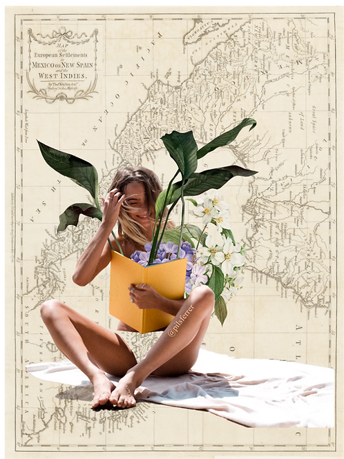 Collage del mapa de México con una mujer leyendo un libro formato vertical