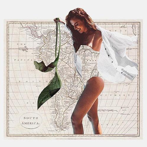 Cuadro original para casa del mapa de Sudamérica