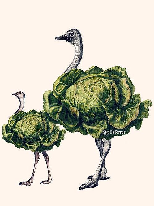 Cuadro original para la cocina de avestruces