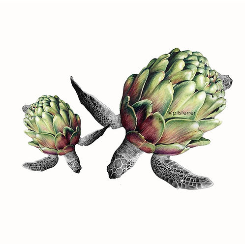 Tortuchofa