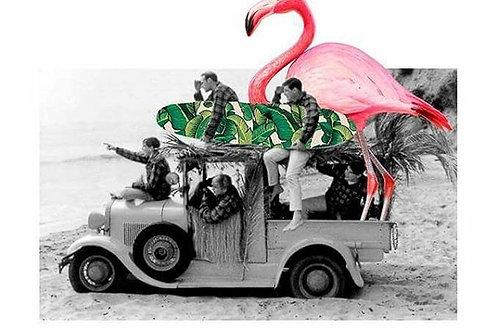 The Beach Boys and the Flamingo