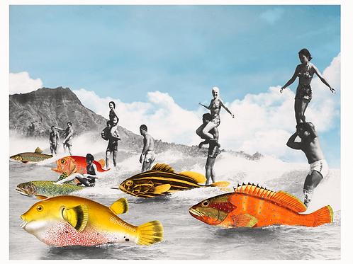 Cuadros para cocina de surf