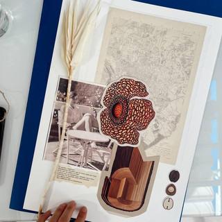 Collage analogico de una alumna en el taller de Pilsferrer