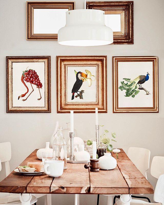 Collage de animales y frutas y verduras