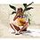 Collage del mapa de México con una mujer leyendo un libro formato horizontal