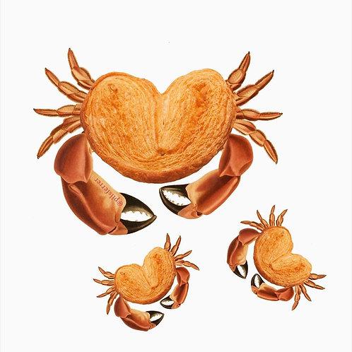 Collage de cangrejos con cuerpo de palmerita