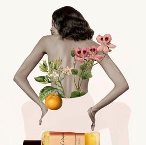 Ilustración de Pilsferrer para Atelier Cologne III
