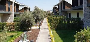 Projenin tüm yeşil alanlarına ve villa bahçelerine özel peyzaj uygulanmıştır.