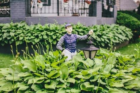 Değirmendere Mahallesi'nde Bir Evin Bahçesi