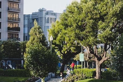 Kuşadası Ege Mahallesi'nde Bir Park