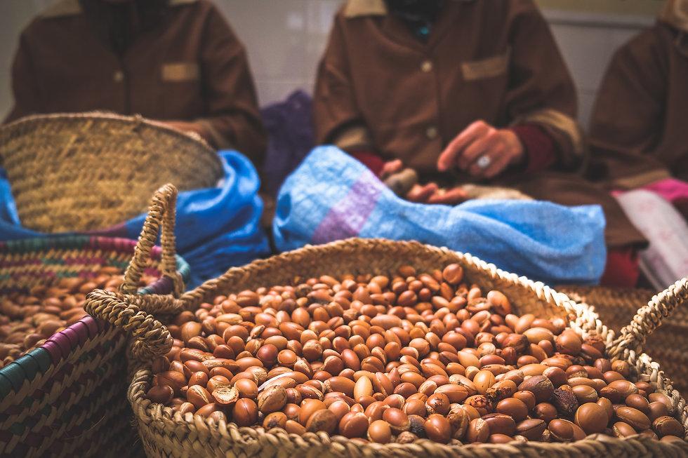 moroccan-women-working-with-argan-seeds-to-extract-argan-oil.jpg
