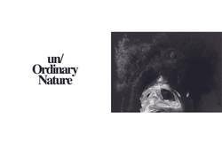 Un_ordinary nature