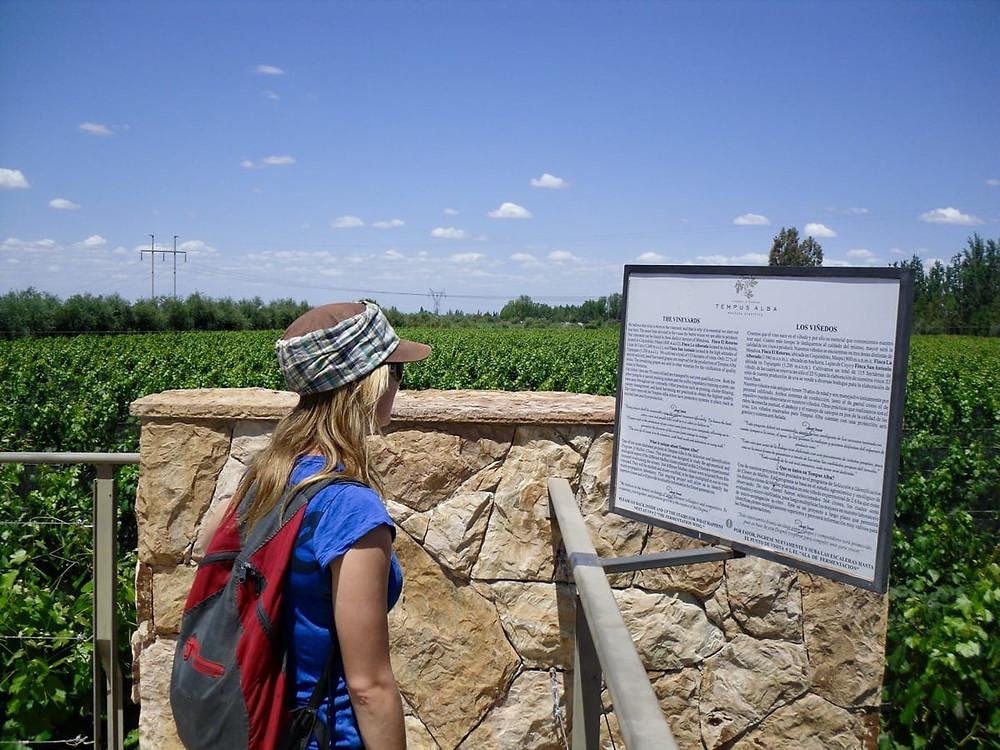 Bronnie in a vineyard in Mendoza, Argentina