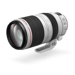 Canon EF 100-400mm f4.5-5.6L II