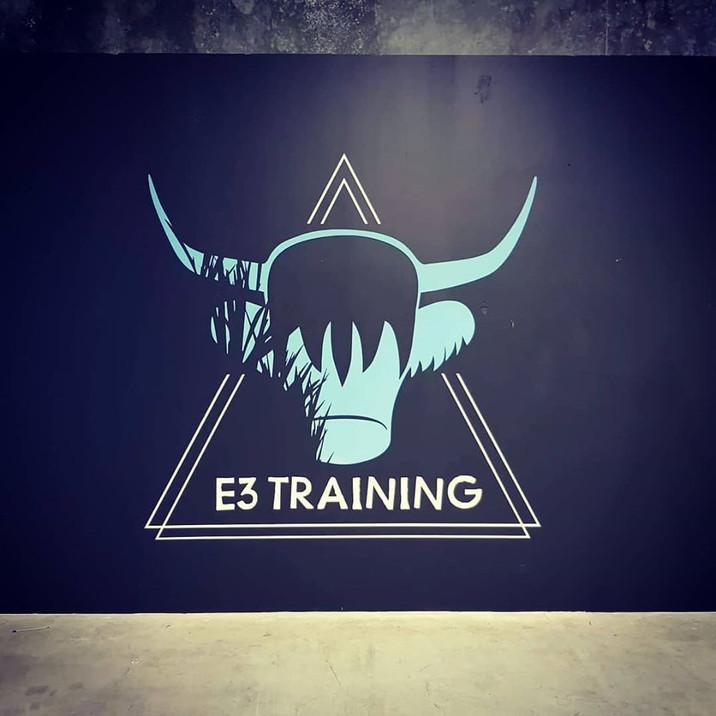 E3 Training wall graphic.