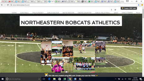 Northeastern Athletics website