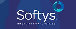 Logo Softys.png