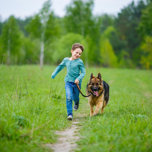 How To Reduce Your Child's Zoom Fatigue And Maintain Mental Energy All Day