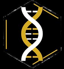 Ikonic Body New Logo.PNG