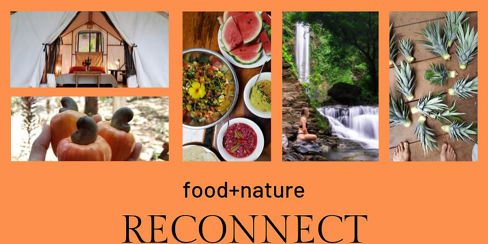 food+nature RECONNECT