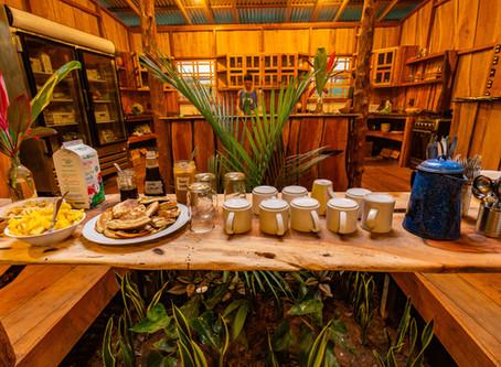 A Volunteer Experience at Cascada Elysiana, Costa Rica