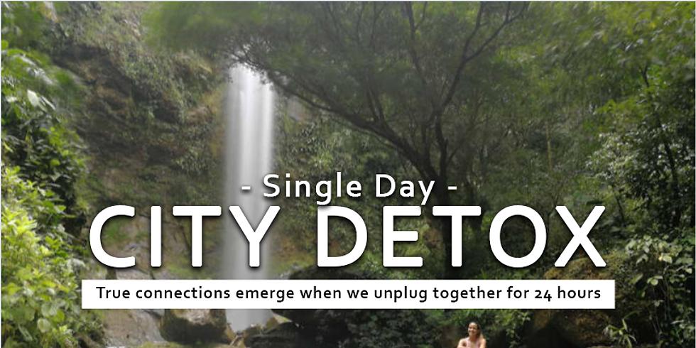 City Detox | Single Day Workshop April