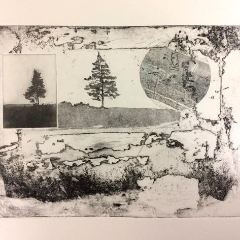 Tree, Earth, Moon III