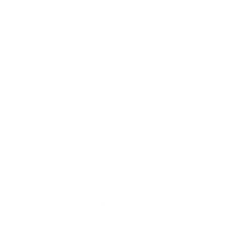 waitaki-whitestone-geopark---aspiring-global---portrait-logo-reverse-rgb-366px_72ppi.png
