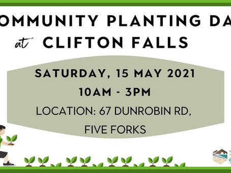 15.05.21 COMMUNITY PLANTING DAY AT CLIFTON FALLS, FIVE FORKS