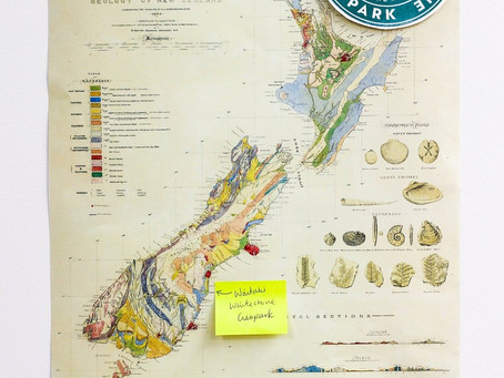 FIRST GEOLOGIC MAP OF NZ FOR SALE