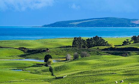Waitaki coast farm.jpg