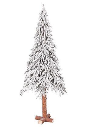 Tannenbaum Alpine Tree