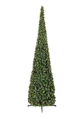 Tannenbaum Cone