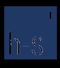 HS logo CUBE 200919 blue.png