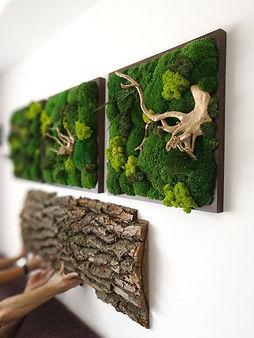 Tableau végétal Annecy-Atout Vert