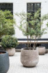 Amenagement végétal balcons terrasse, paysagiste Annecy avec Atout vert