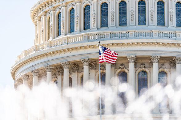 Canva - US Congress dome closeup with ba