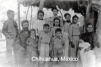 chihuahua%20photo_edited.jpg