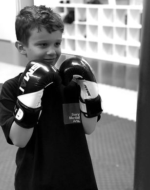 Story Martial Arts MMA Epping
