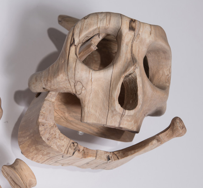 Loquat Fossil detail .jpg