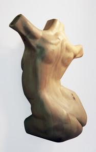 Curved Torso (side)