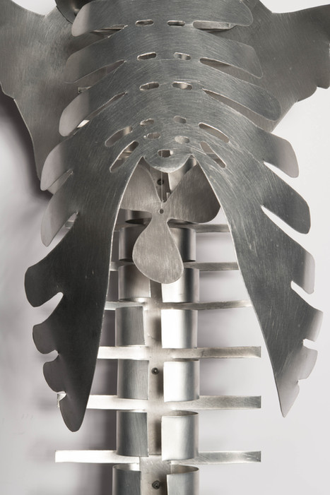 Spine with Propellor (detail)