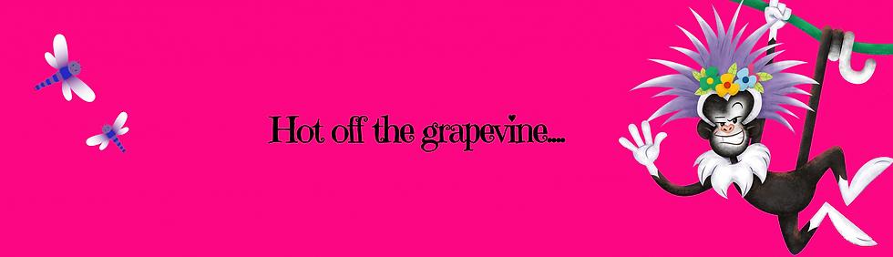 Webiste header 2021 hot off the grapevin