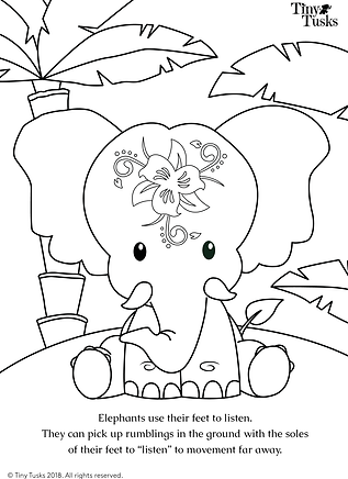 Colouring pages_1_New.png