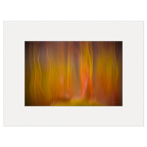 """Photo Art Print """"On Fire no. 2"""" - multiple sizes available"""