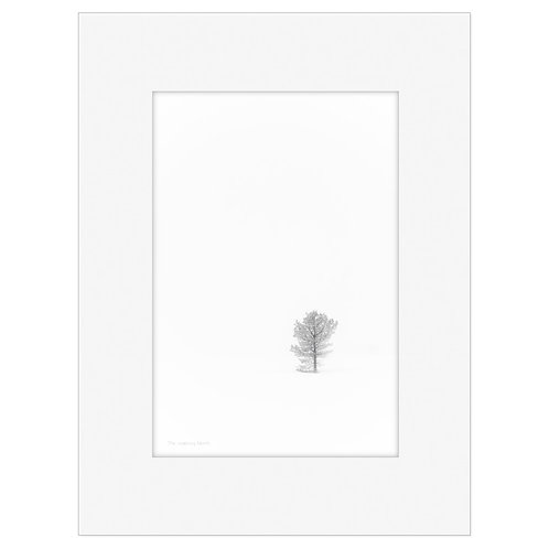 "Photo Art Print ""Arctic Elements no. 2"" - multiple sizes available"