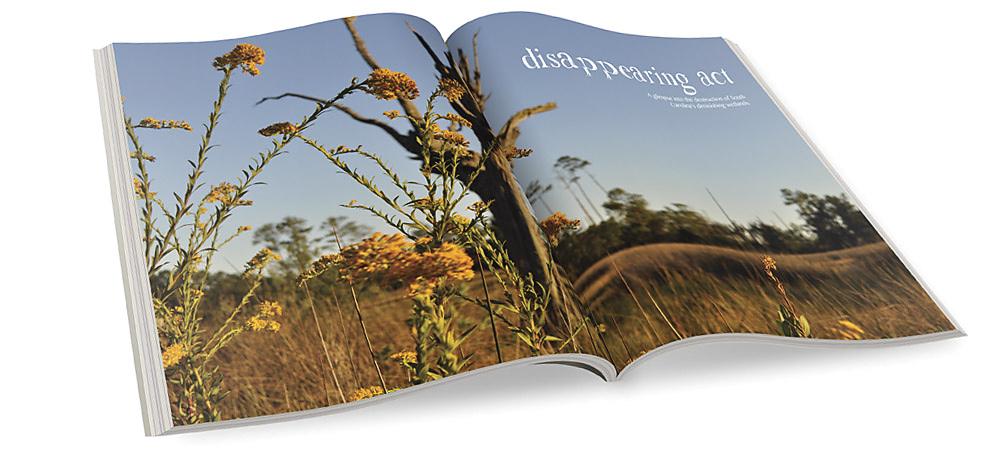 Magazine layout & photography.