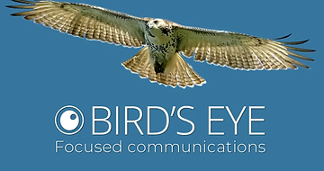 Bird's eye focused communications.png
